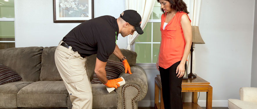 Streamwood, IL carpet upholstery cleaning